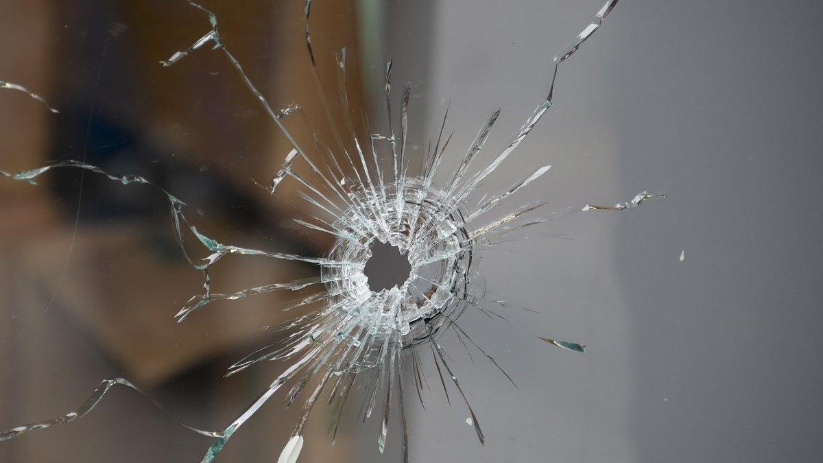 В Тверской области неизвестный стреляет по окнам соседей из пневматики - новости Афанасий