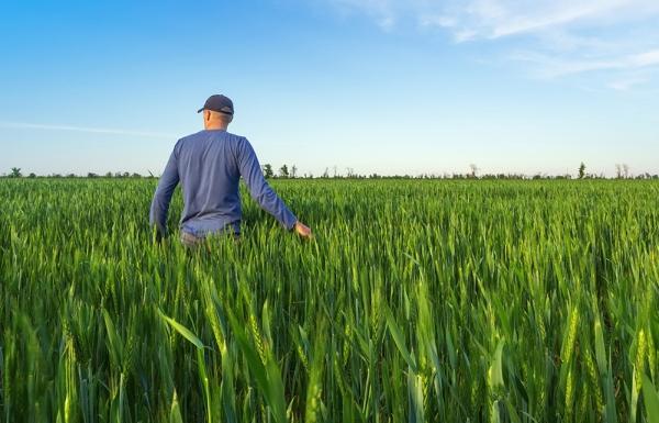 Суд поддержал позицию Управления Россельхознадзора по Тверской области и назначил землевладельцу штраф - новости Афанасий
