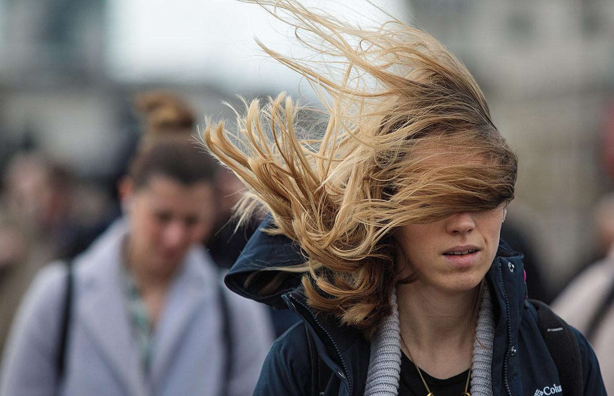Жителей Тверской области предупредили об усилении ветра