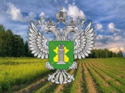 В соседнем с Тверской областью регионе вводятся в оборот земли сельхозназначения, от которых добровольно отказались собственники - новости Афанасий