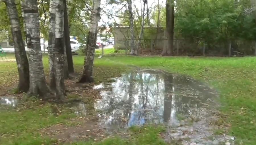 Территорию школы в Тверской области залил кипяток