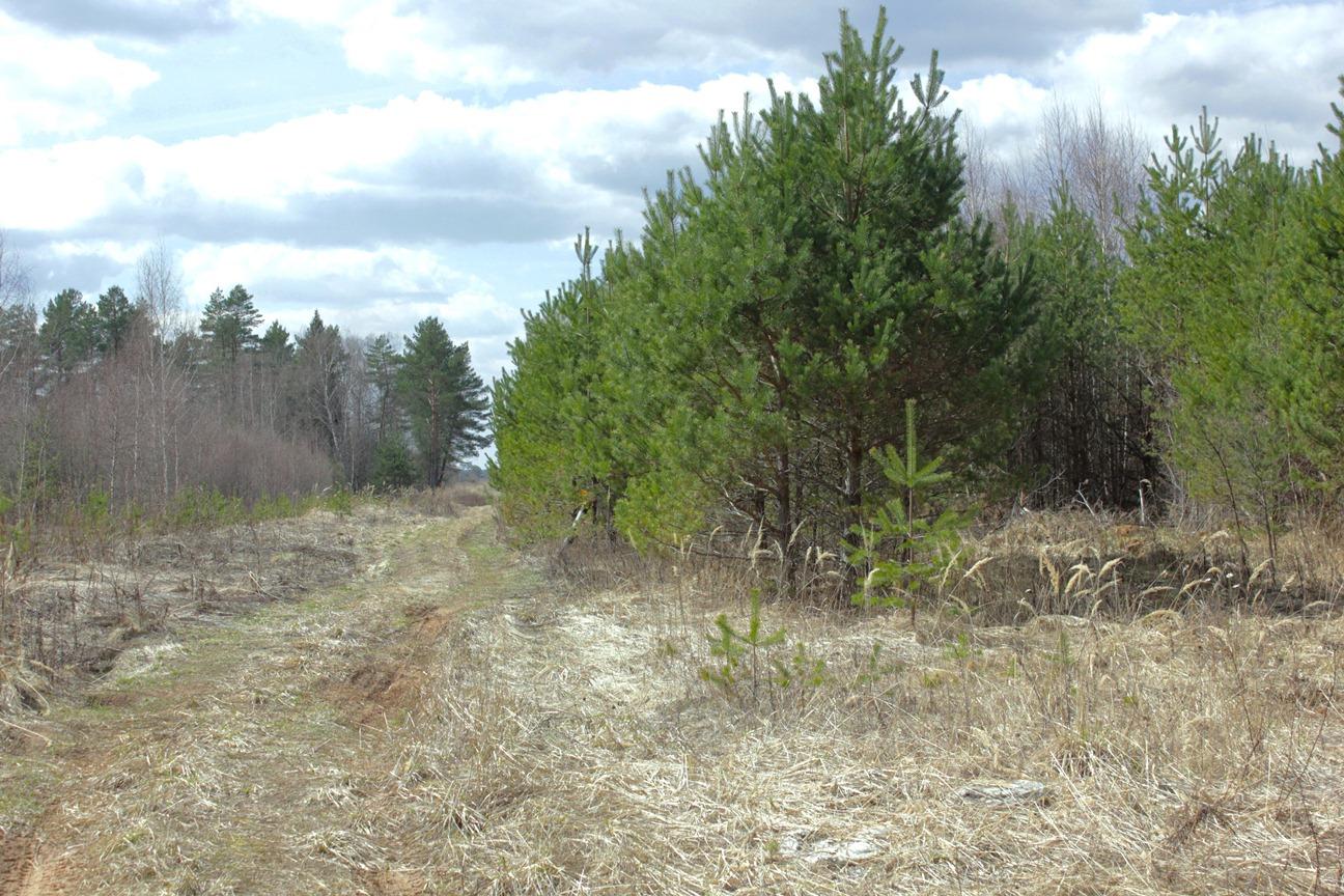 В Осташковском районе не используются 143 гектара сельхозземли - новости Афанасий