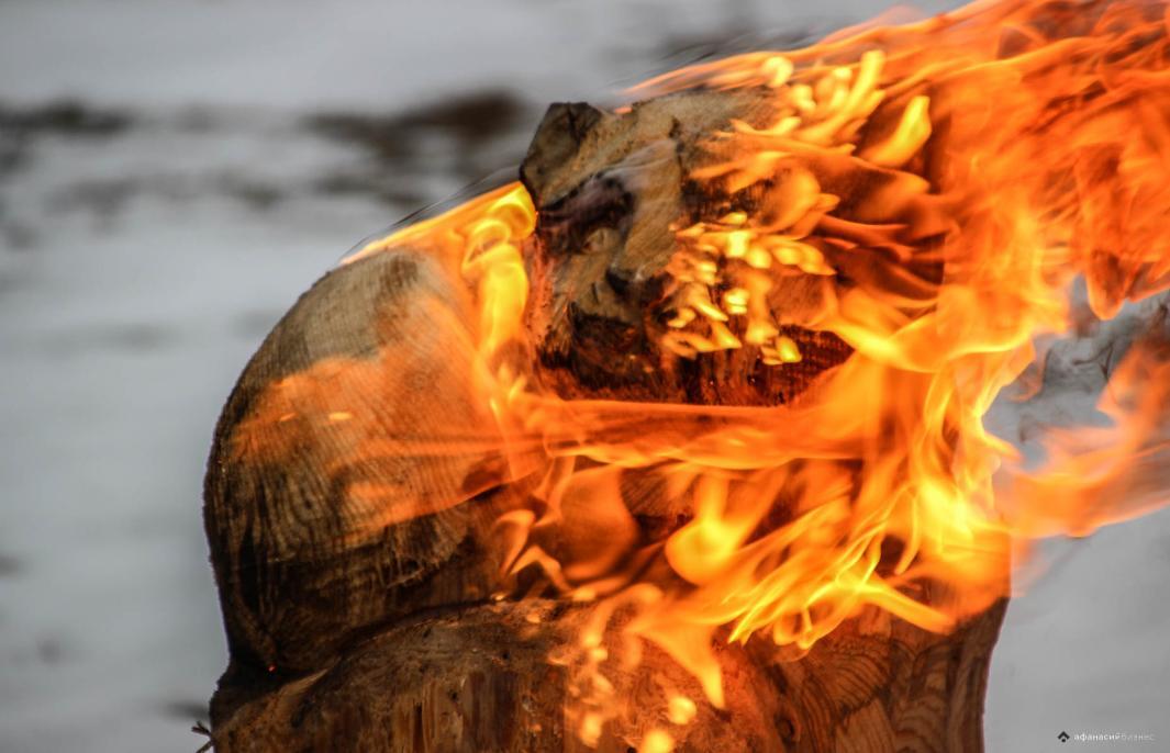 Вторая жизнь бревна: в Кимрском районе Тверской области соревновались лучшие резчики по дереву