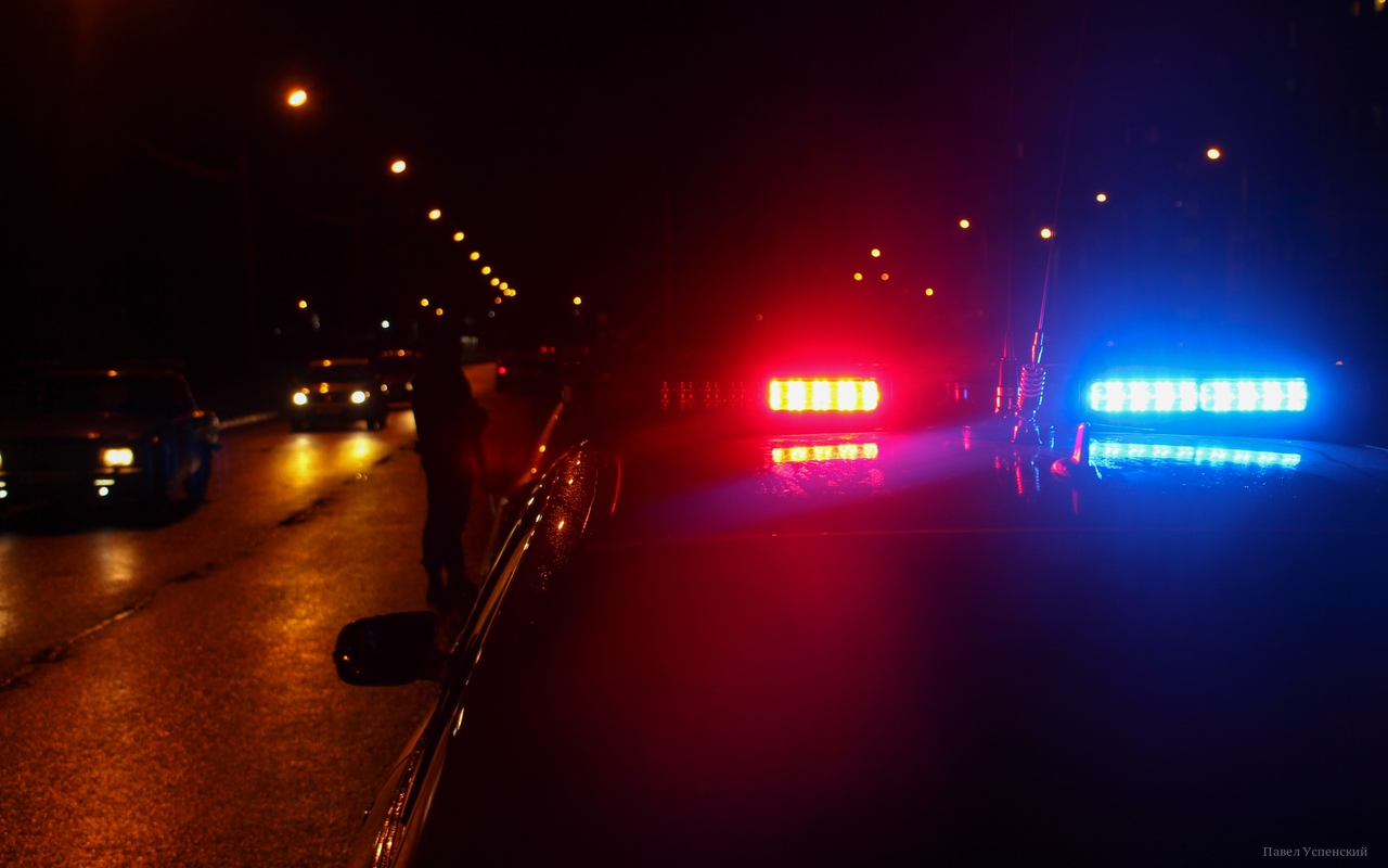Водитель мопеда получил травмы в ДТП с лосем в Тверской области