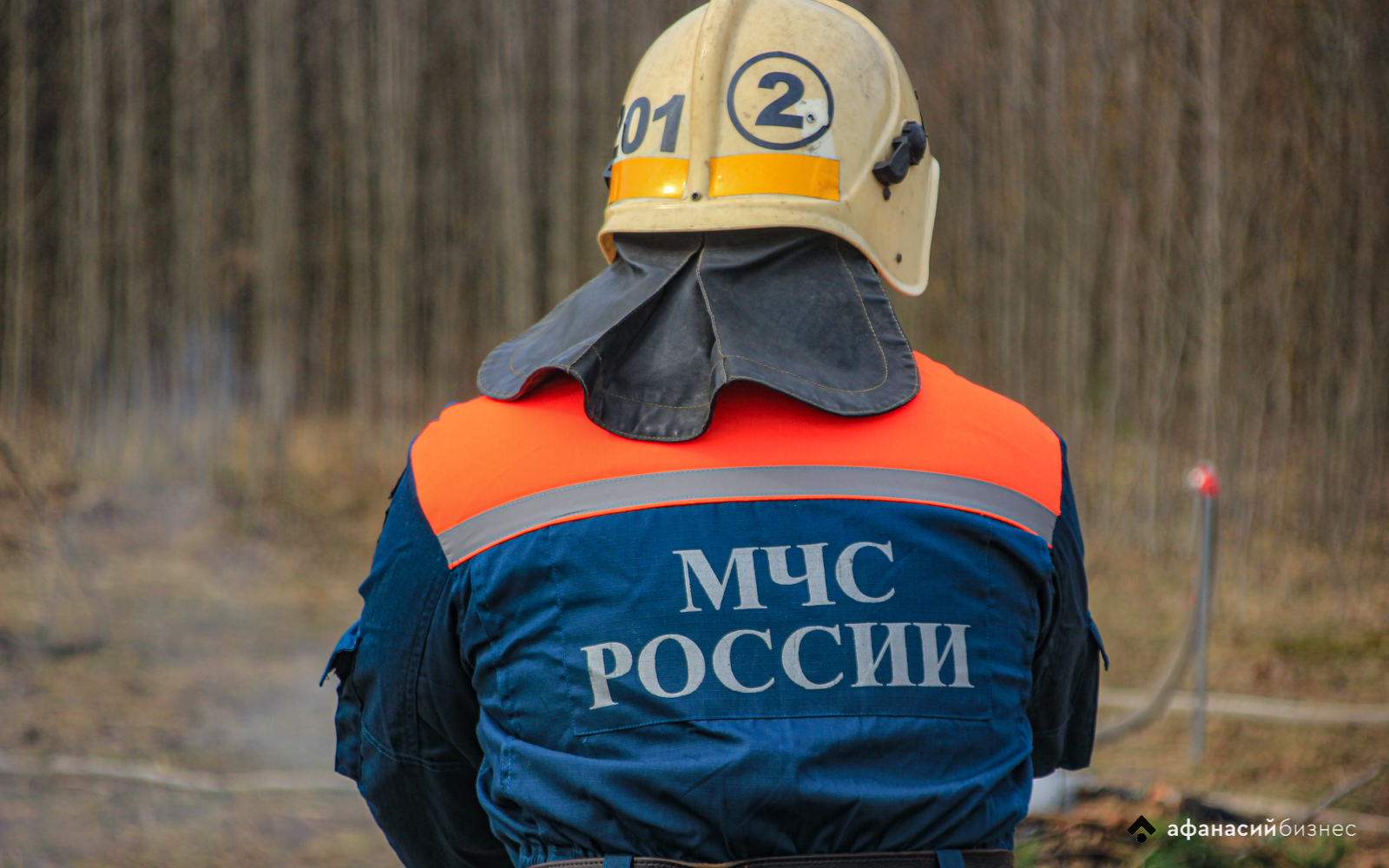 В Тверской области прогнозируют высокую пожарную опасность