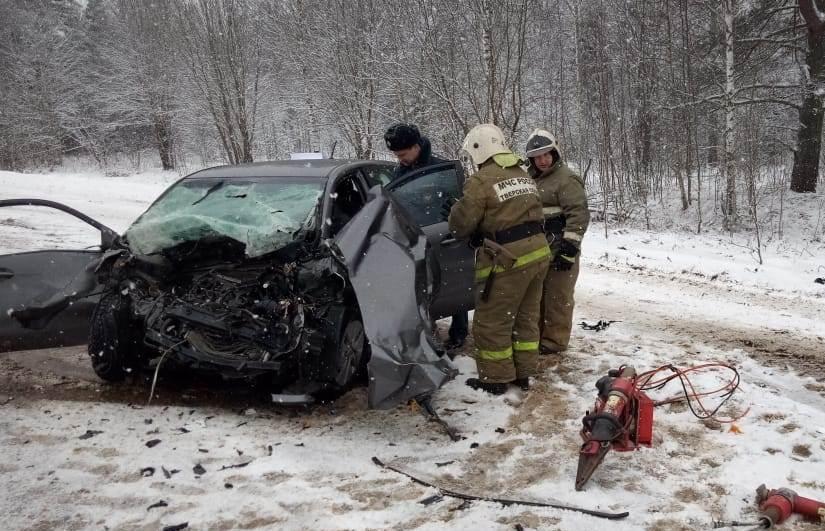 Пять человек пострадали при столкновении микроавтобуса с легковым автомобилем в Тверской области - новости Афанасий
