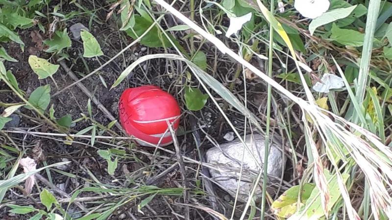 В Тверской области «закладчик» попытался избавиться от наркотика, заметив полицейских - новости Афанасий