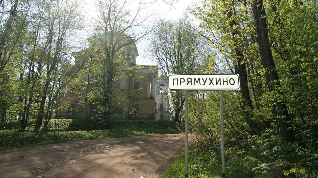 В тверской усадьбе Бакуниных начал работу волонтерский лагерь