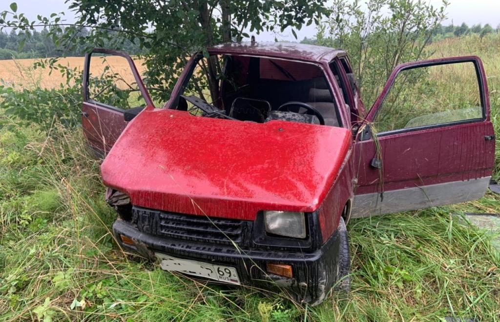 Тверские водители ночью таранили деревья и столбы - новости Афанасий