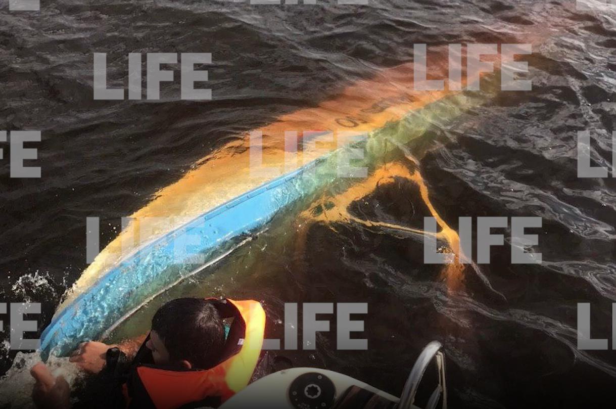 В Тверской области отдыхающие спасли пассажиров перевернувшейся лодки - новости Афанасий