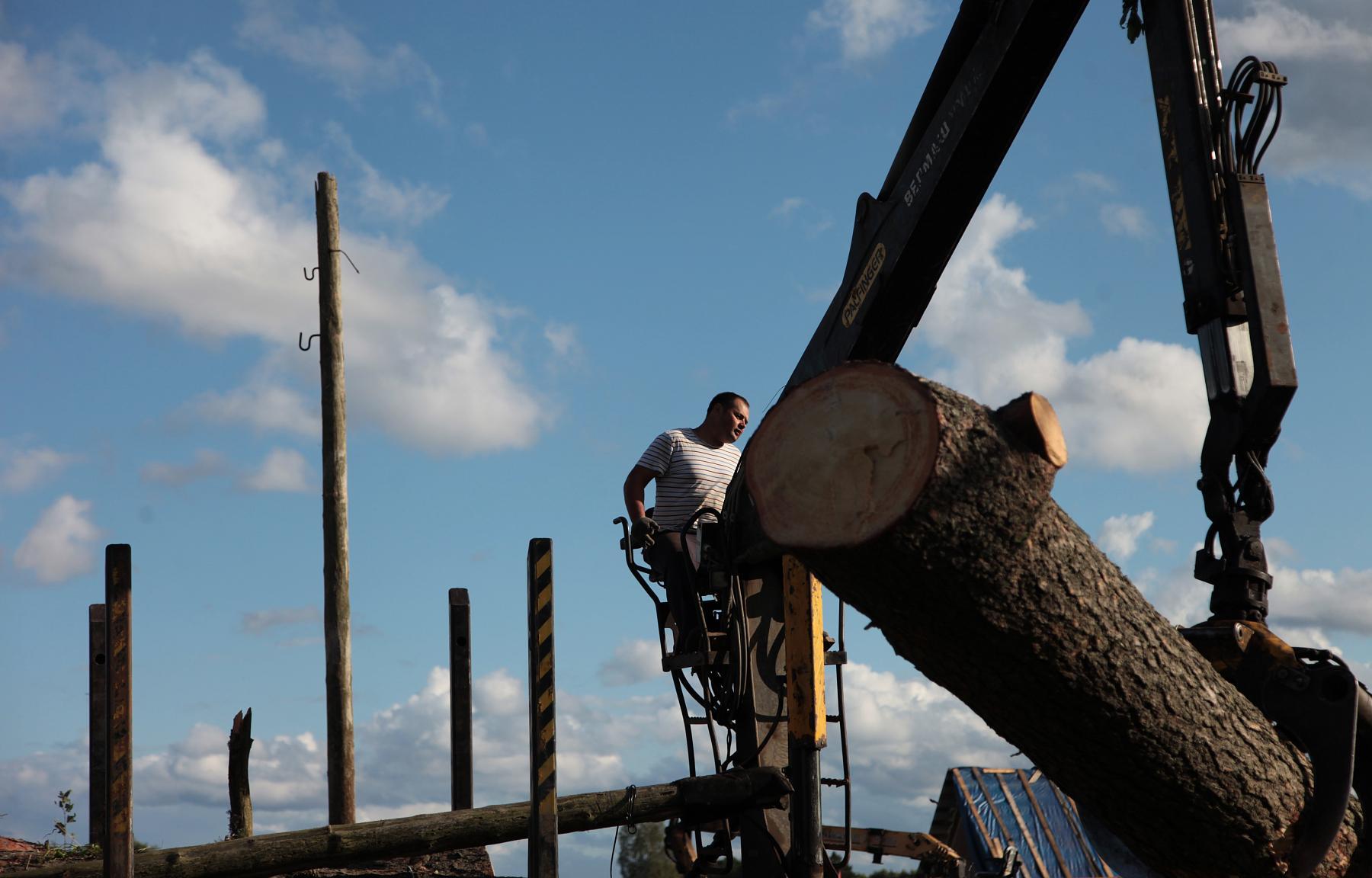 В Андреаполе Тверской области продолжаются восстановительные работы после прошедшего смерча