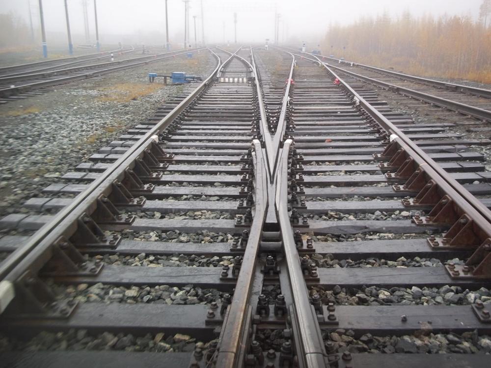 Житель Тверской области похитил 7 крестовин стрелочных переводов железнодорожных путей - новости Афанасий