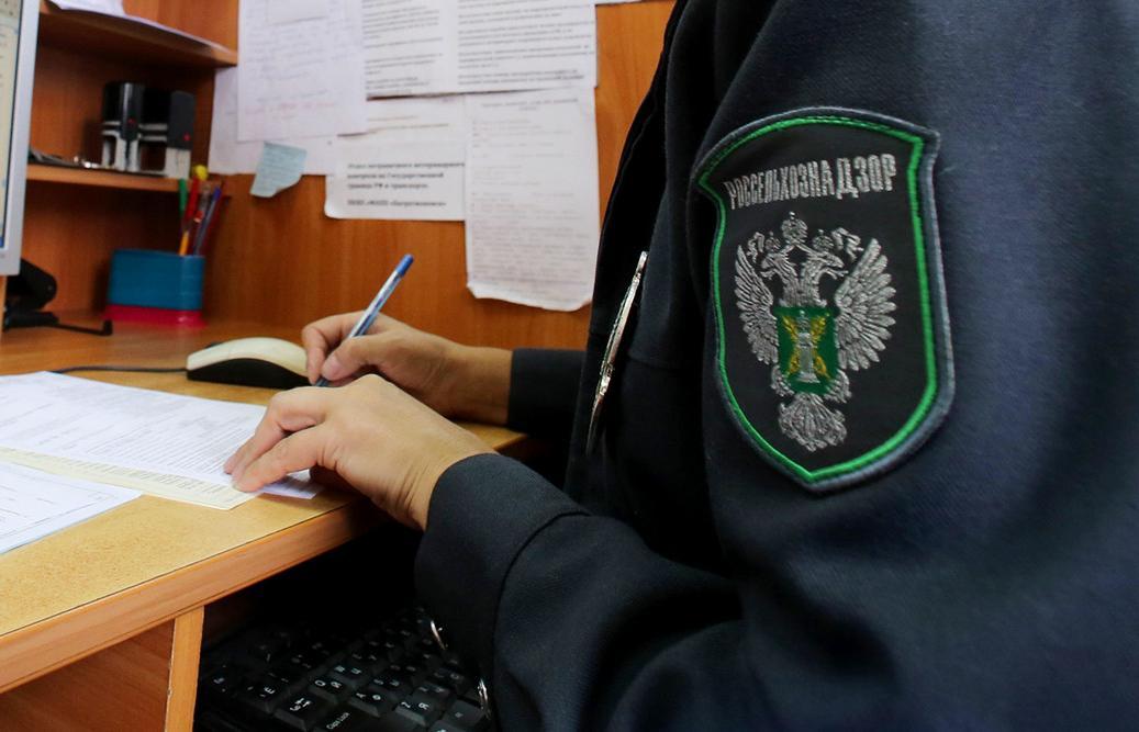 Фитосанитарный контроль в Твери за минувшую неделю не выявил нарушений - новости Афанасий