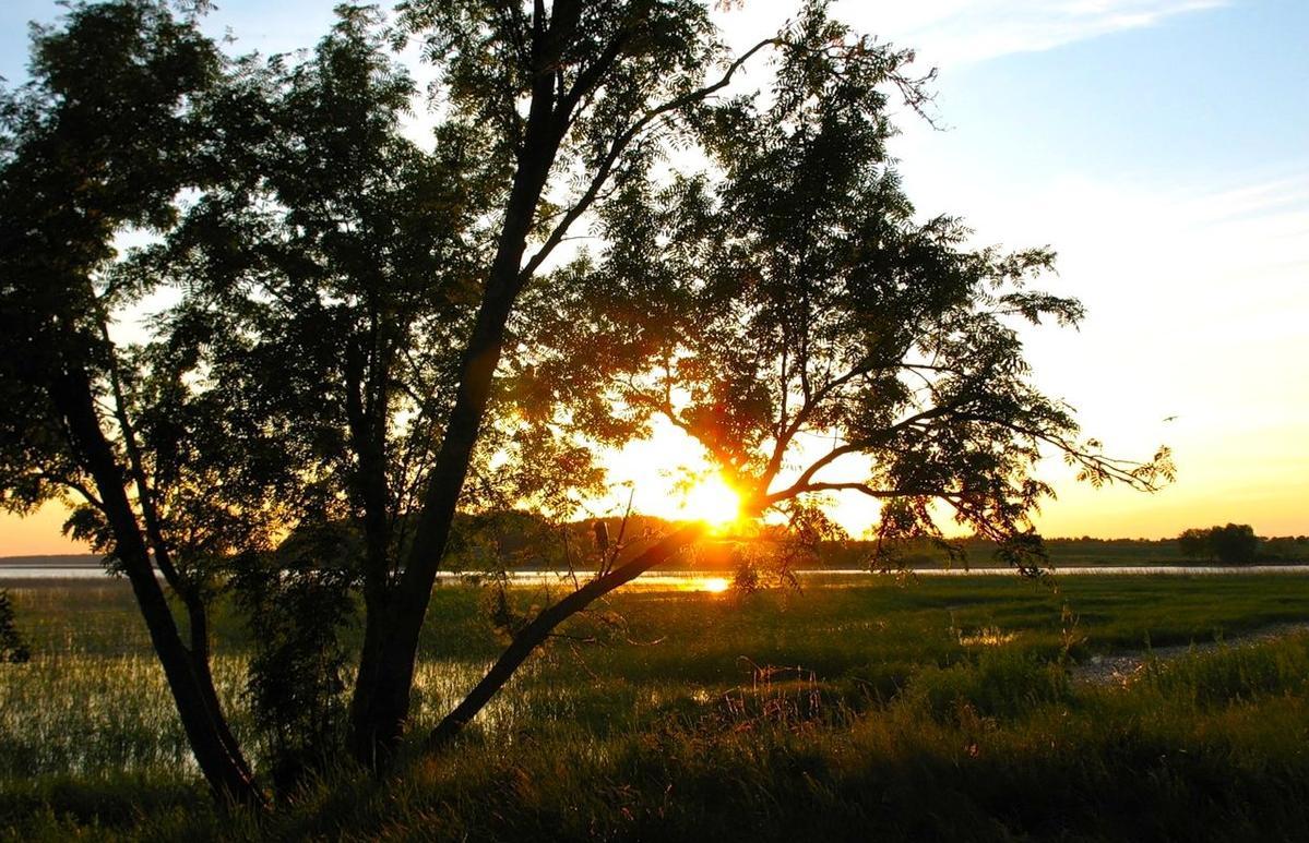 «Луч Свободы» на Селигере запустил свои угодья - новости Афанасий