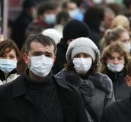 Носителями неизвестного вируса из Китая могут оказаться животные - новости Афанасий