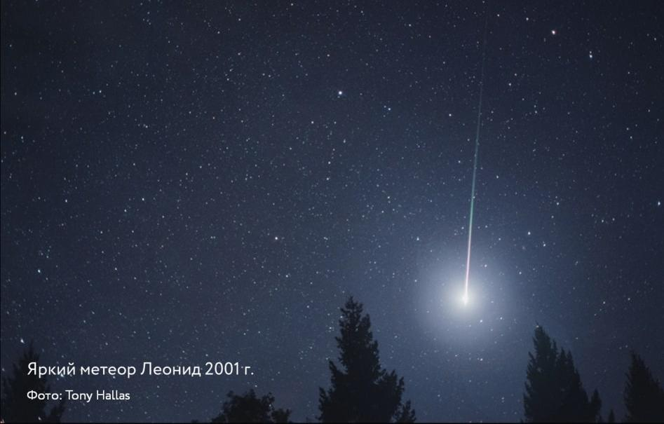 Небо в ноябре украсит яркий звездопад - новости Афанасий