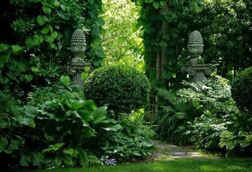В Ботаническом саду Твери появится вьетнамский уголок - новости Афанасий