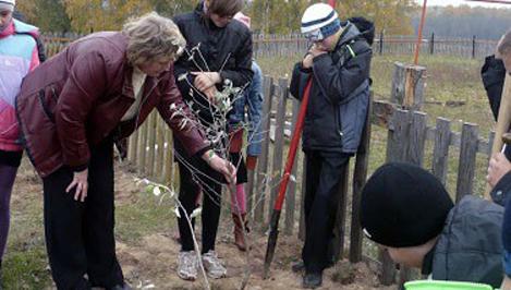 Старицкие школьники заложили аллеи в рамках акции «Живи, лес!»