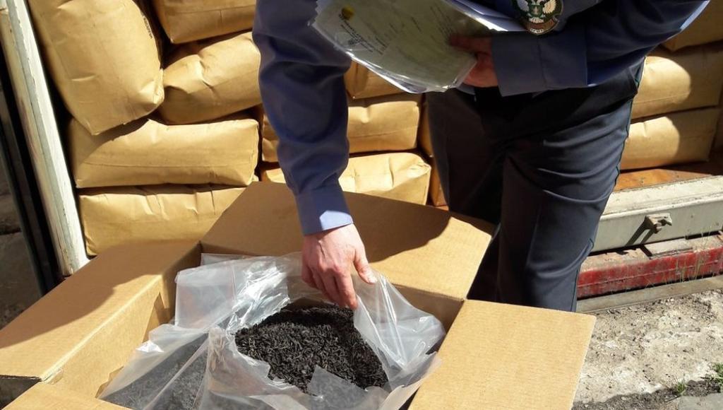 В кофе, чае и семенах, ввозимых в Тверскую область, карантинных объектов не выявлено