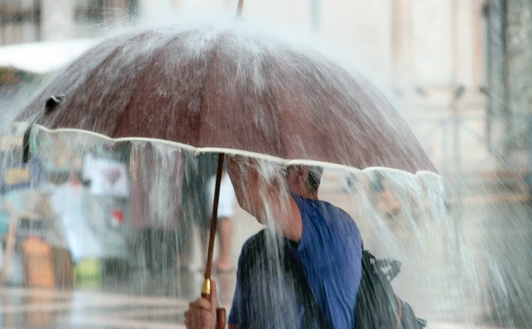 Жителей Тверской области предупреждают о сильном ливне