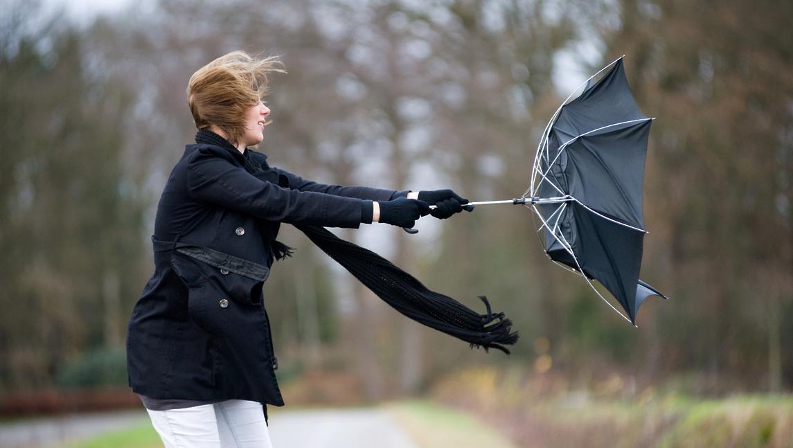В Тверской области усилится южный ветер