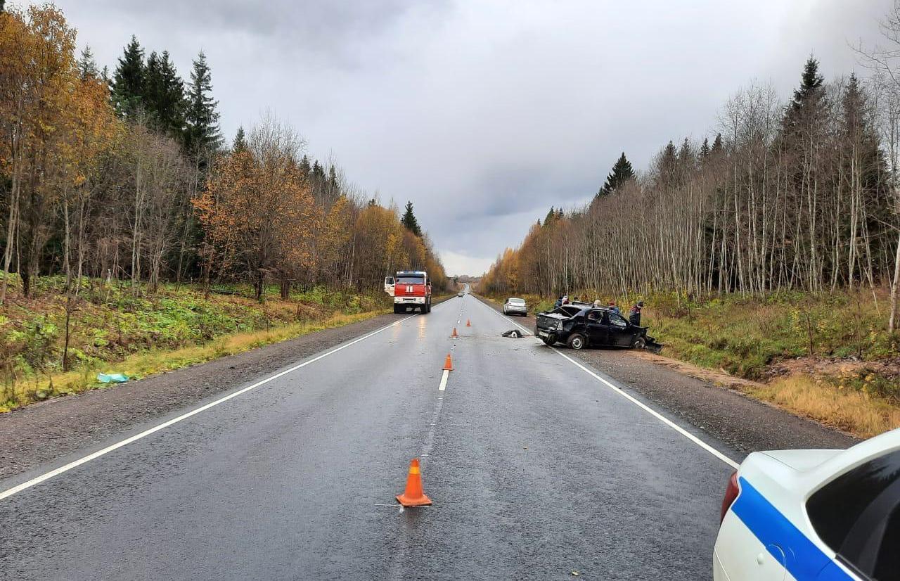 В Тверской области водитель устроил ДТП с пострадавшим и сбежал  - новости Афанасий