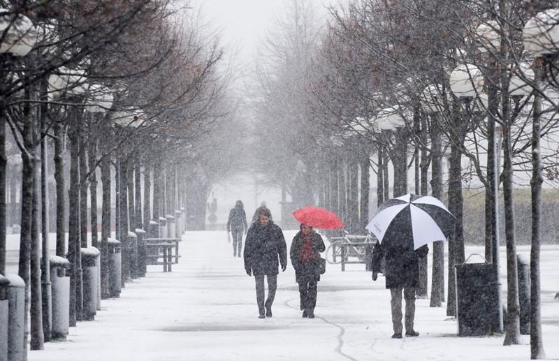 В Тверской области объявлено штормовое предупреждение из-за усиления ветра