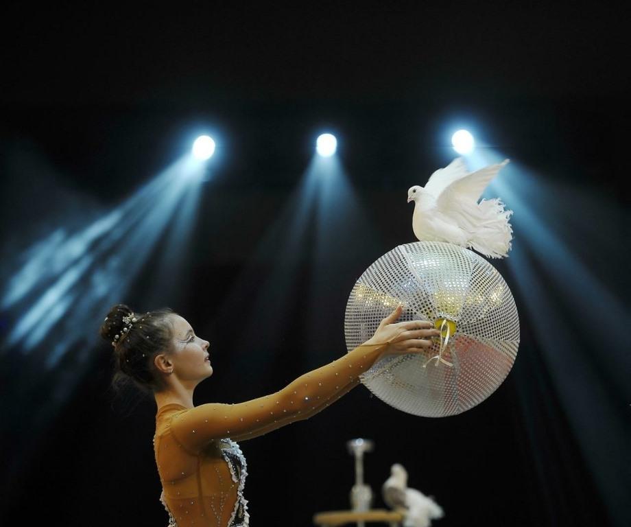 В Тверь на фестиваль детского и молодежного циркового искусства приедут участники со всего мира