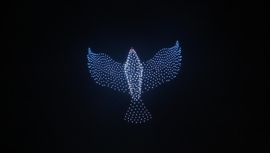 В Ржеве Тверской области обещают показать еще одно световое шоу с дронами
