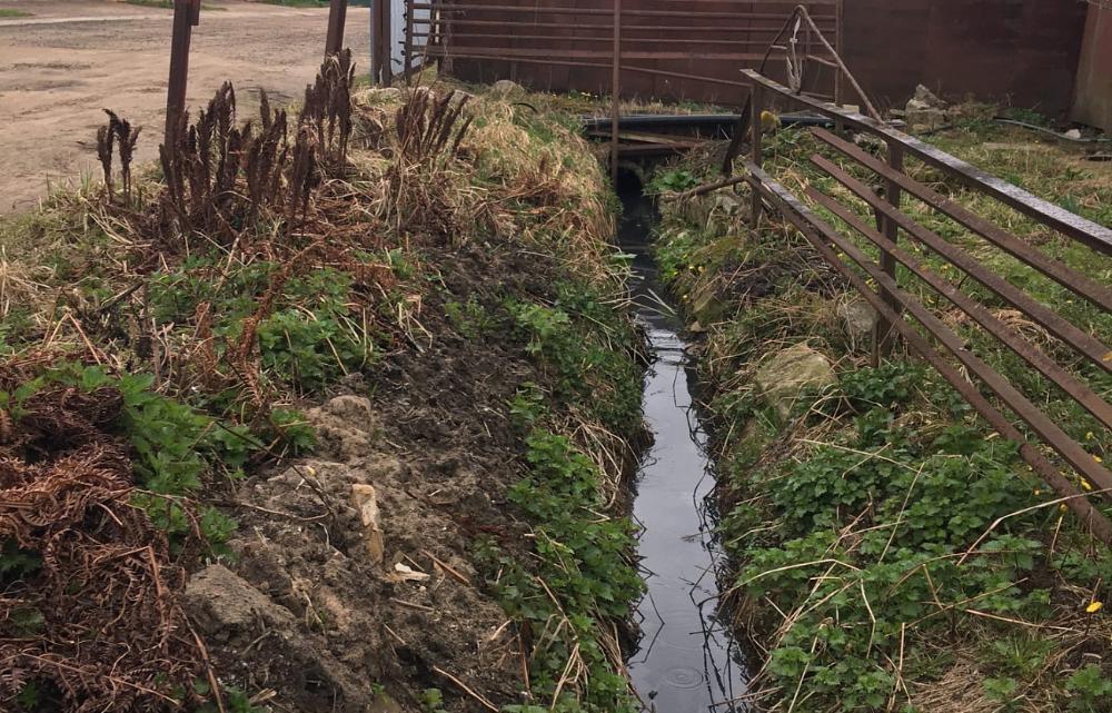 В Твери владелец участка затопил соседей фекалиями - новости Афанасий