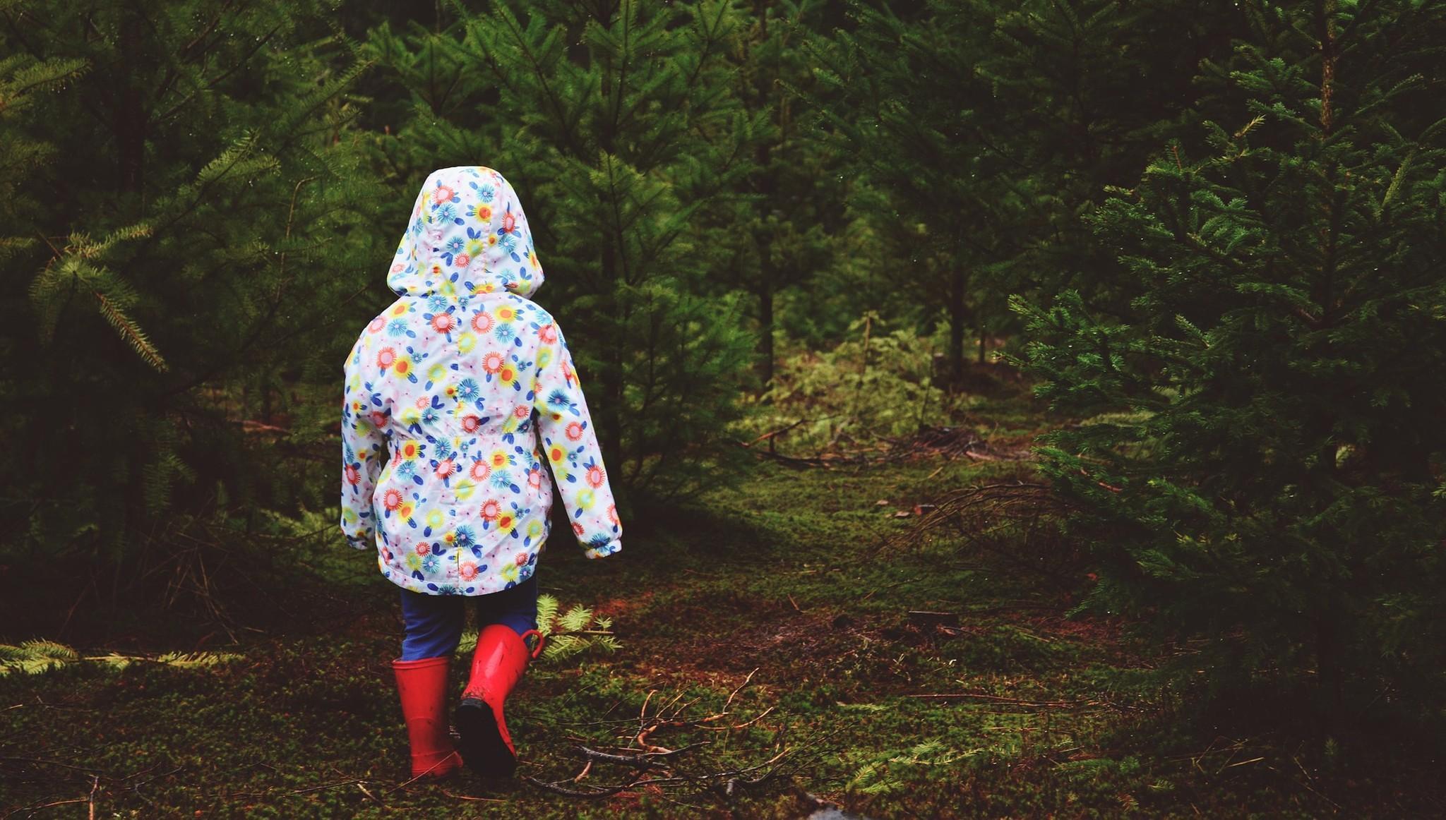Девочку, потерявшуюся в лесу под Тверью, нашли пожарные
