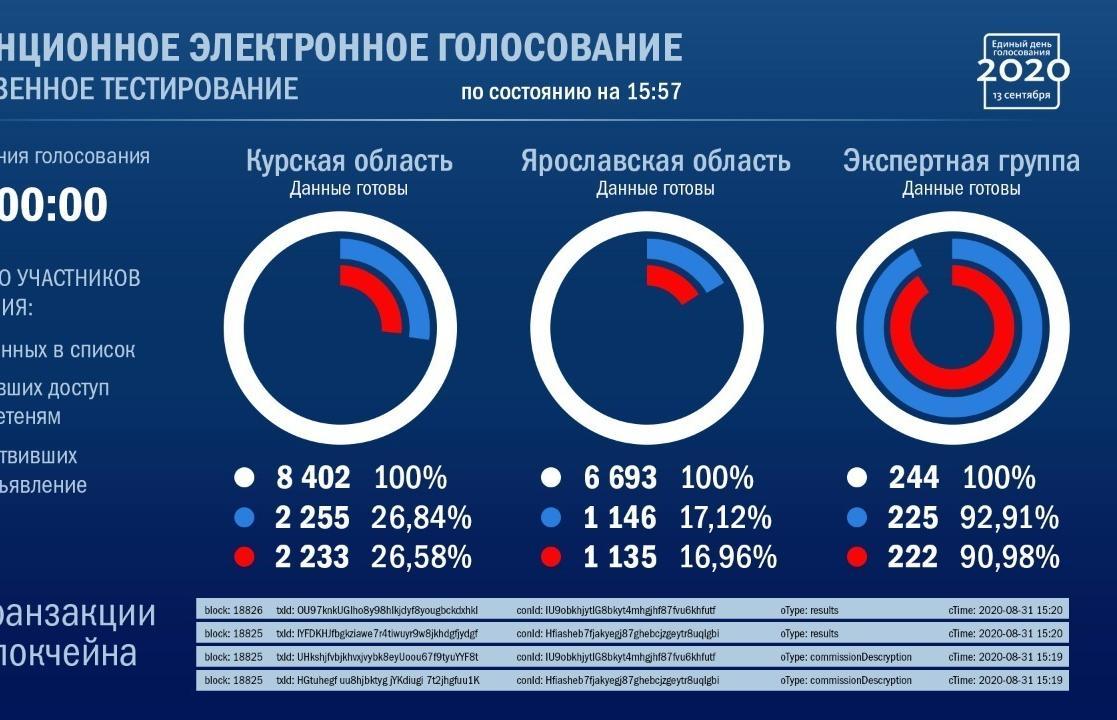 Независимые наблюдатели смогут проконтролировать процесс дистанционного голосования