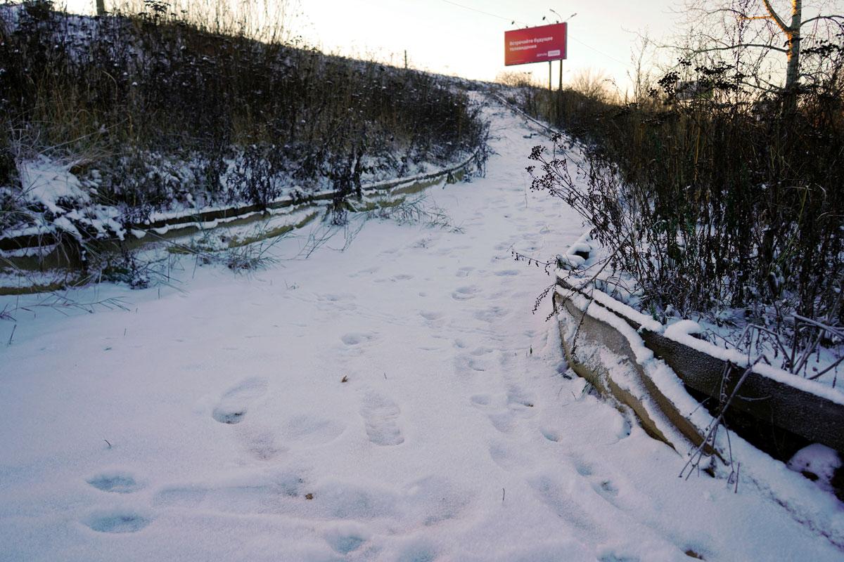 парк Тьмака в Твери