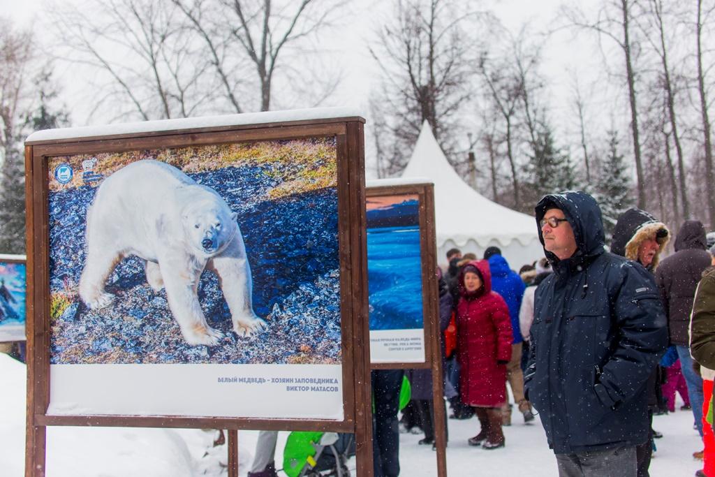 Фестиваль Арктика в Твери